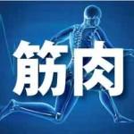 筋肉アミノ酸