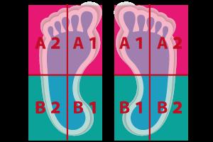 4スタンス足裏の分類