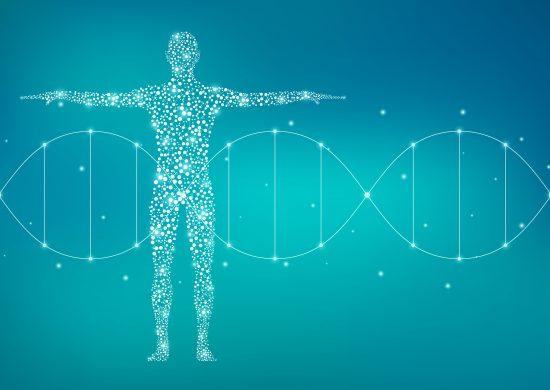 タンパク質系アミノ酸