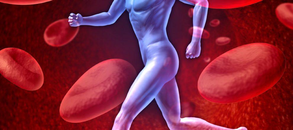 動脈硬化の原因改善