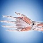 手首の腱鞘炎の種類と症状とは?