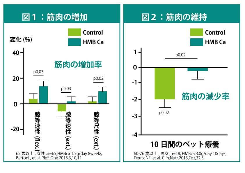 HMBの筋力低下抑制効果のグラフ
