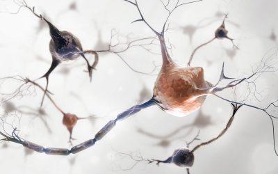 神経伝達障害