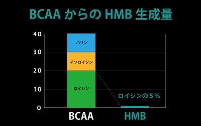 ロイシンからのHMB生成量