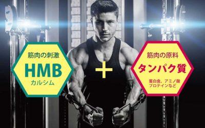 HMBとタンパク質