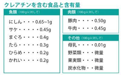クレアチン含有量